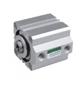 Компактный цилиндр серии TPSDA 100